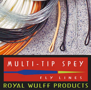 Lee Wulff  Triangle Taper Multi-Tip Spey -schwimmend-